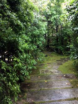 京都 露地 年間管理
