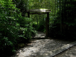 京都 嵐山 数寄屋門