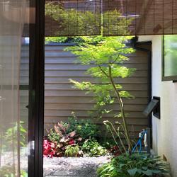 京都 京町家 0邸