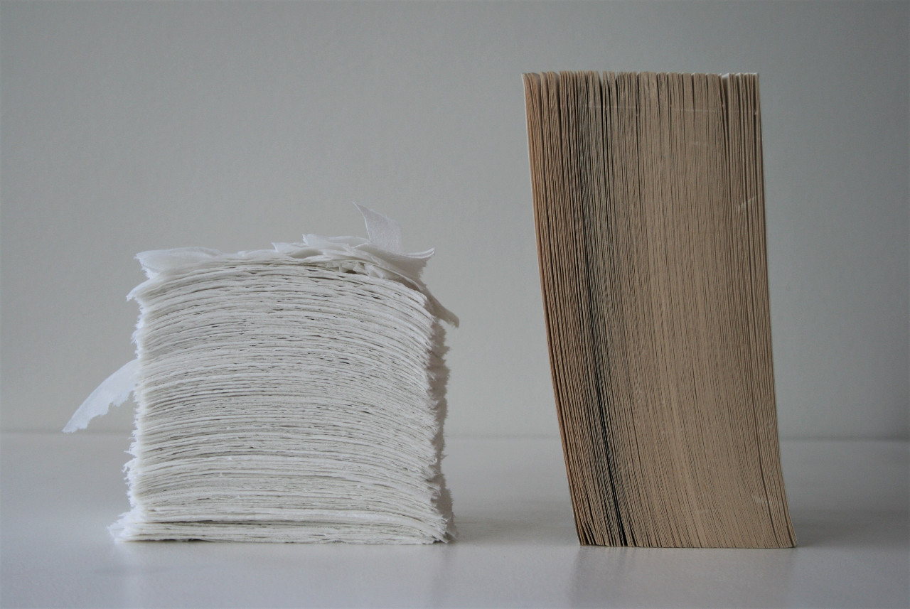 Roll of toilet paper, separated, and book (2020)