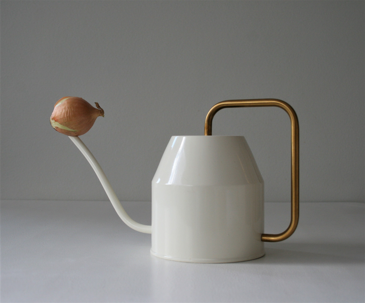 Watering can and onion (2020)