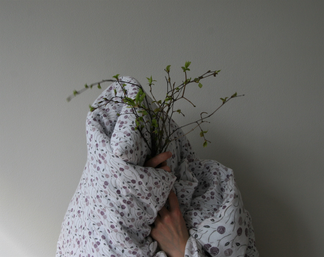 Duvet, branches from a birch tree (2020)