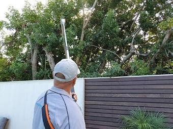 Trim hedges, landscaping, fenc and deck build