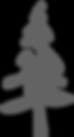 MyTrail logo