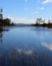 Ikkunalampi Riisitunturi Lapland MunPolk