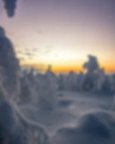 Riisitunturi talvi.jpg