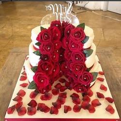 Red Rose Miniature