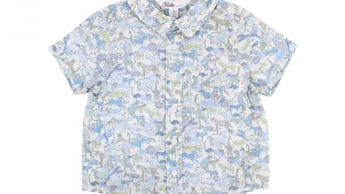 Boys Dinosaur Liberty Shirt