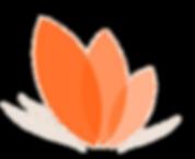 orange flower.png