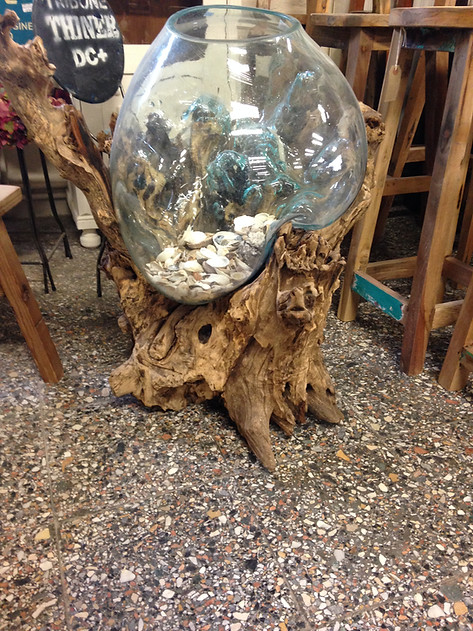 Root and Glass Vase