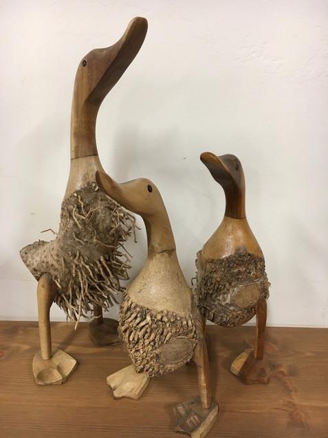 hairybamboo root ducks