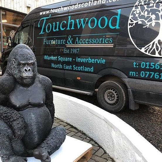 Always monkeying around at touchwood!🙈.