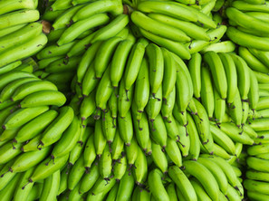 Bananas from Mexico
