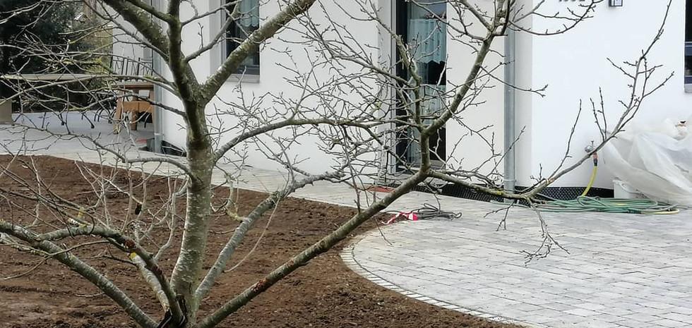 einen Schönnen Garten in Königsbrunn