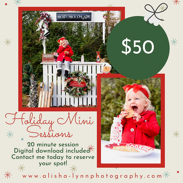 Holiday Mini Sessions 2019.png