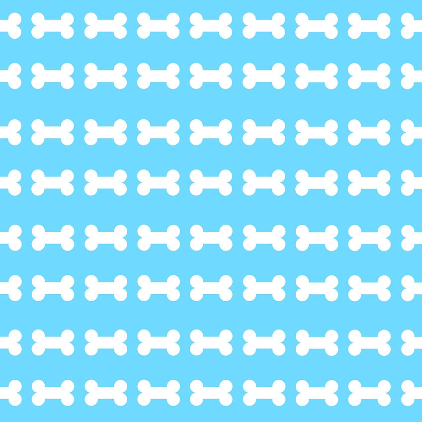 dog-bone-background-1131348_1920.jpg