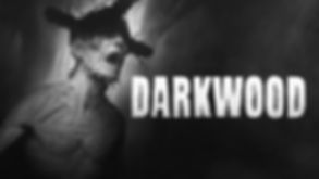 Darkwood-review-1024x576.jpg