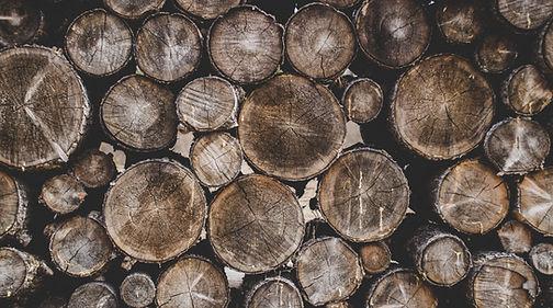 Tree Rounds.jpg