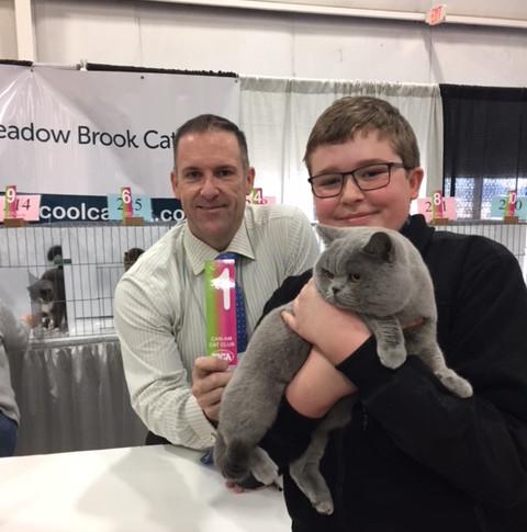 Best Cat award at TICA Show RW Supreme Grand Champion of BCBLUES