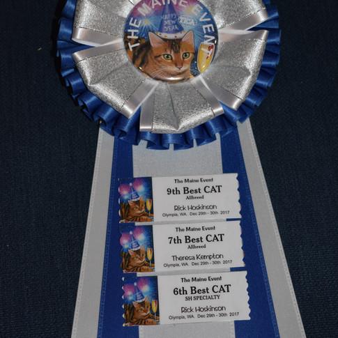 RW Supreme Grand Champion of BCBLUES with TICA Awards