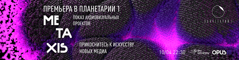 metaxis_10.04_statcic_VK.png