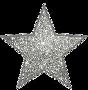 152-1527617_star-silver-glitter-starstic