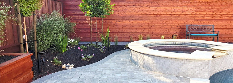 Backyard Pool Time