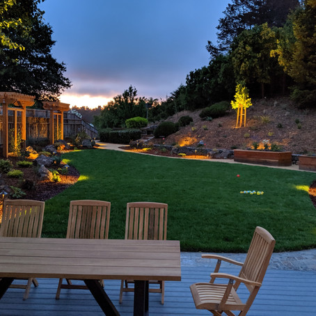 How DIY Homeowners Can Avoid Making Costly Outdoor Landscaping Mistakes