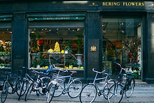 Estudar na Dinamarca - Ensino Superior gratuito