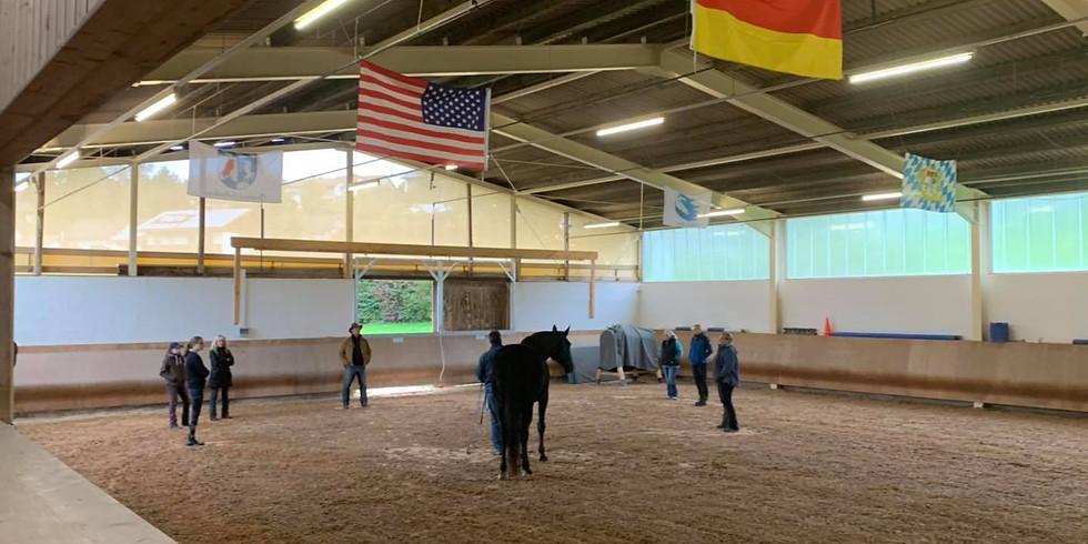 Horsemanship Day