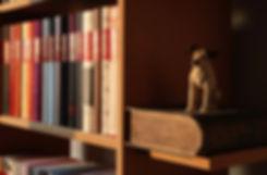 book-shelf-3419456_1920.jpg