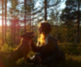 walking-the-dog-273526_1920.jpg