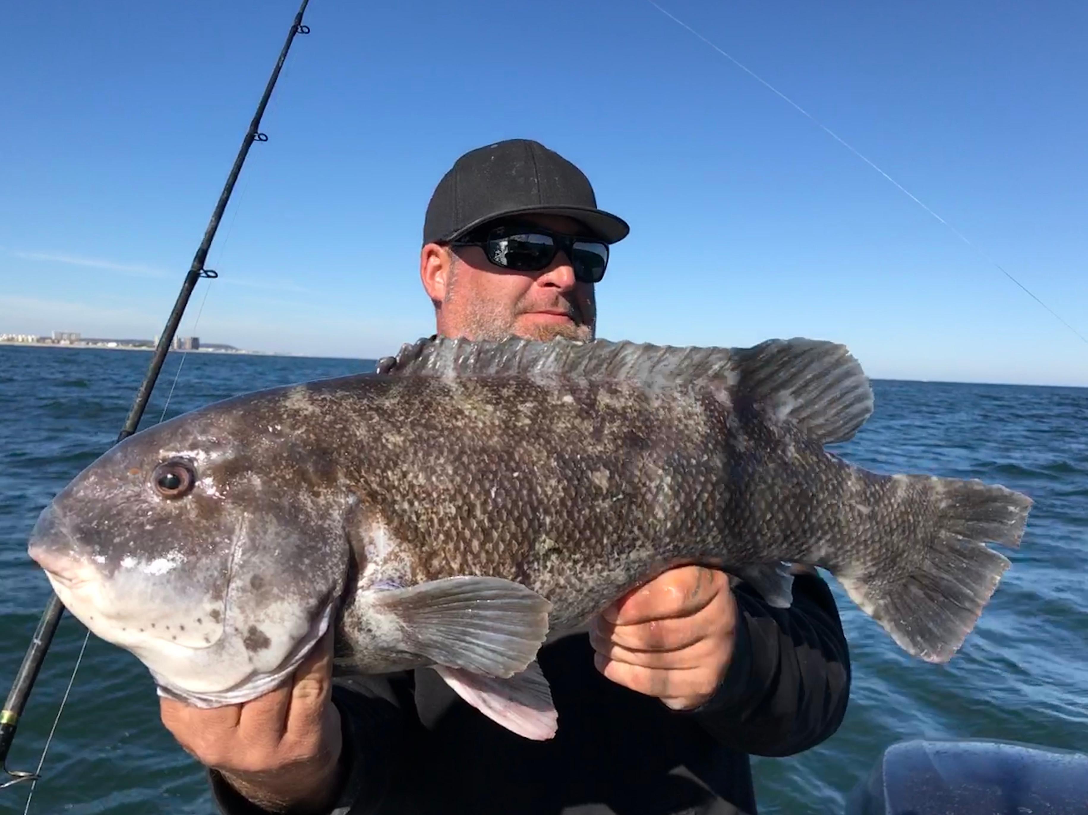 Blackfish Trip