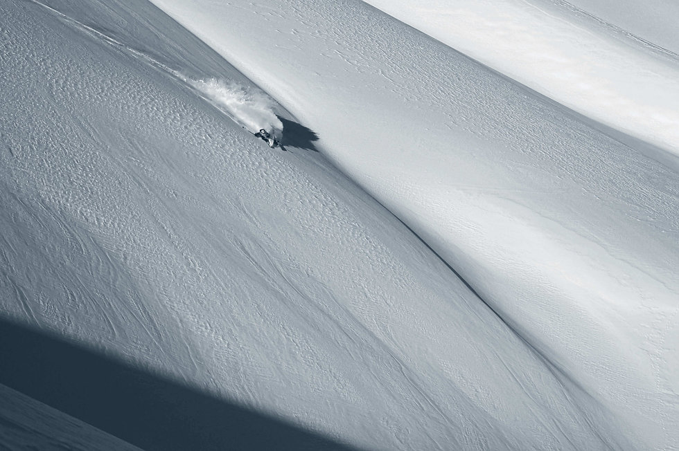 Movement Skis - Swiss Engineered Skis.jp