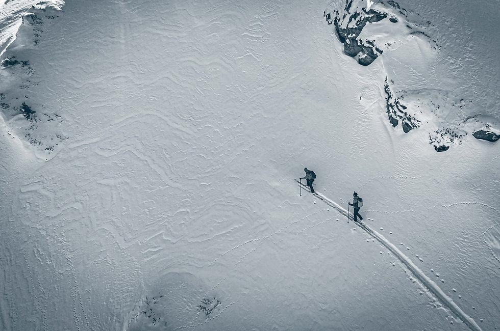 Movement skis - Freetouring Skis Switzer