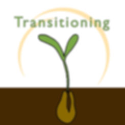 Transitioning (8-week learning series)