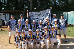 Diamond Dawgs 9U