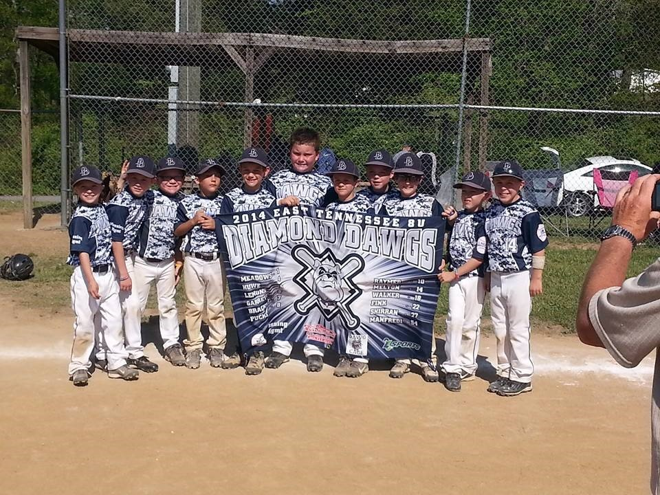 8U Diamond Dawgs