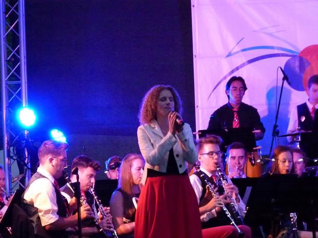 Sommerserenade 2018 Stadtorchester Roth