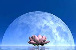 a ritmo di luna - meditazione mensile di luna piena_edited.jpg