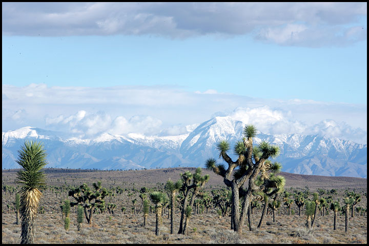 Panamint Mountains 1