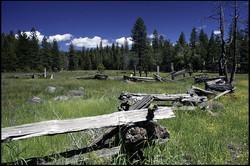 Butte Meadows 1