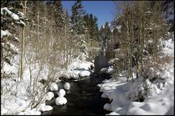 Bishop Creek 1