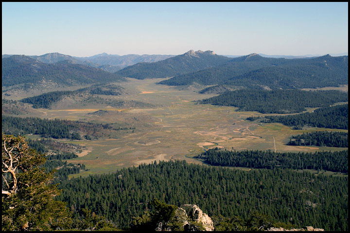Monanche Meadow