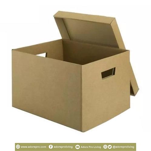 Storage File Box / 12 X 16 inches / Brown