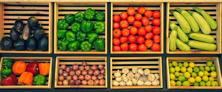 Abbiamo abbastanza spazio per produrre il cibo del futuro?