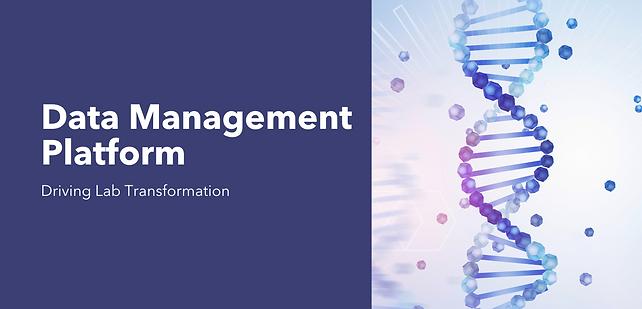 Data Management Platform (1) (1).png