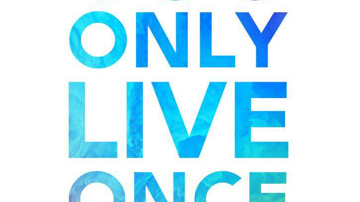 You Only Live Once Life and Business Stye: A Creative Playbook for Freedom, Fun