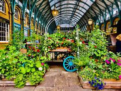 Covent Garden by Geraldine Crimmins