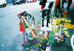 A Corinthian's Shopping Cart, São Paulo, by Dino José